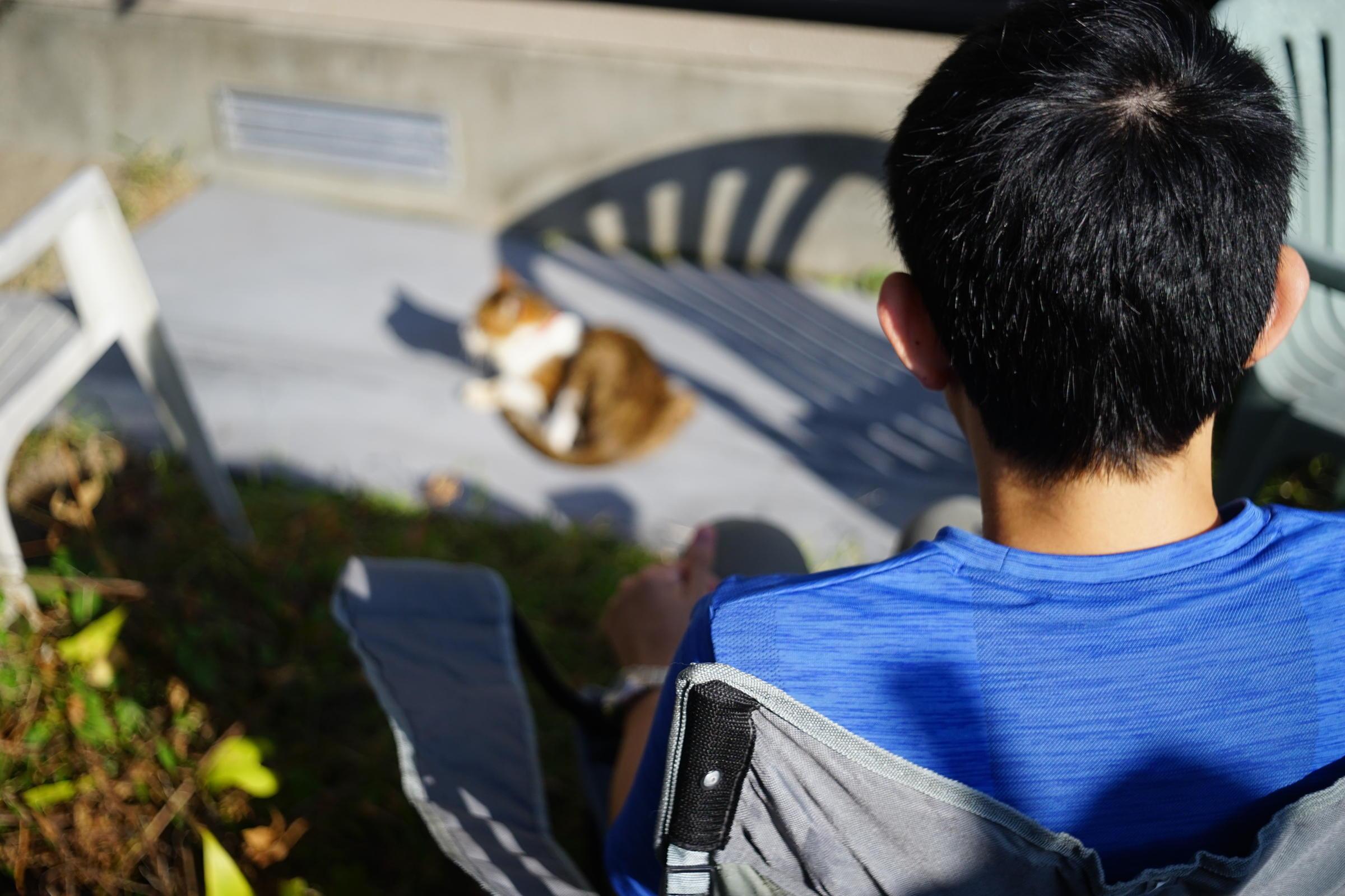 Cat by me, love_b0060239_21422954.jpg