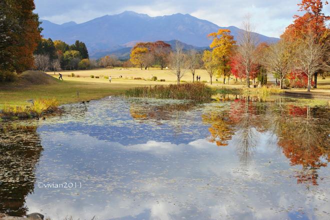 日光そばまつり2019 in 日光だいや川公園_e0227942_21570043.jpg