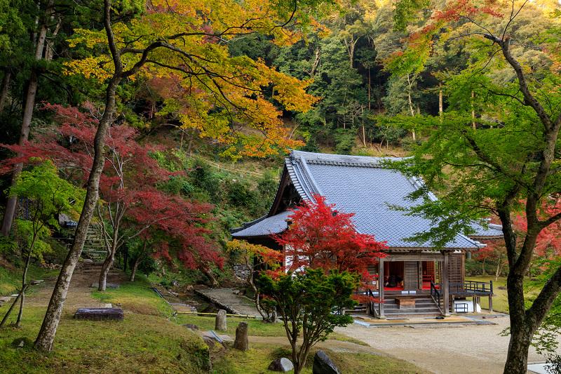 紅葉が彩る奈良2019 正暦寺の秋_f0155048_22163413.jpg