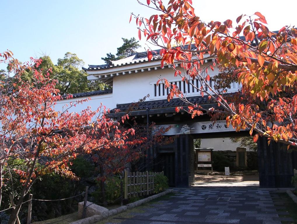 岸和田城_d0202264_8502556.jpg