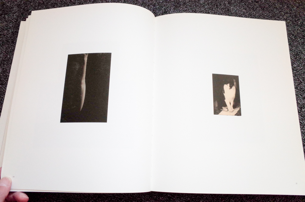 Masao Yamamoto 山本昌男 「Small Things in Silence」_c0016177_15430441.jpg