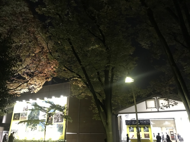 ゴッホ展(上野の森美術館)_c0366777_20513913.jpeg