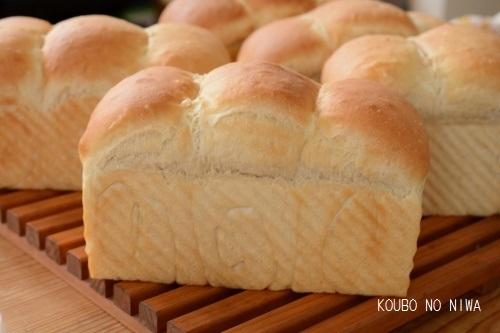 あこ酵母でマスカルポーネとはちみつの食パン_f0329586_16213519.jpg