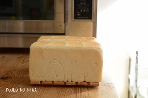 あこ酵母食パン_f0329586_16484663.jpg