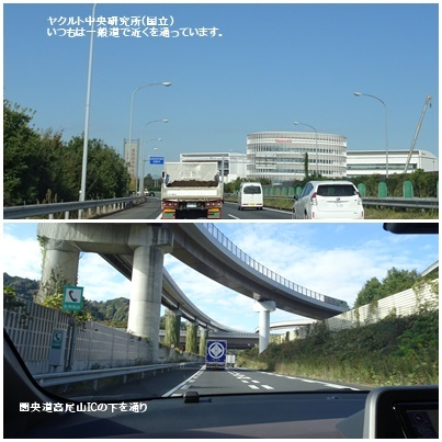 富士山 満月 畑 の備忘録_c0051105_14455173.jpg