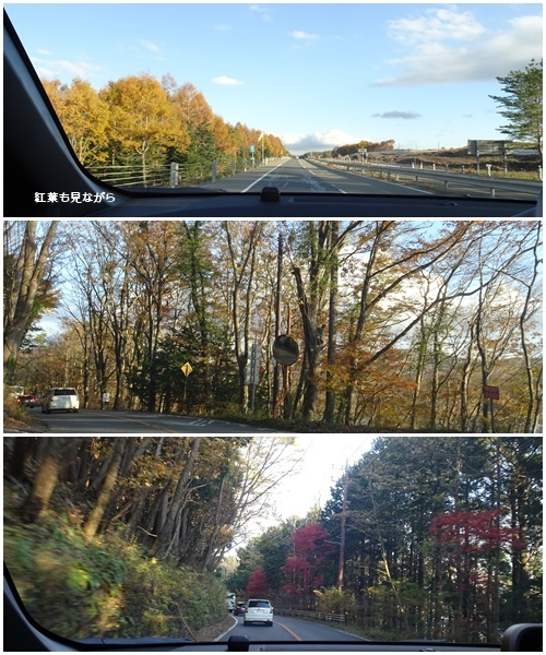 富士山 満月 畑 の備忘録_c0051105_16253909.jpg