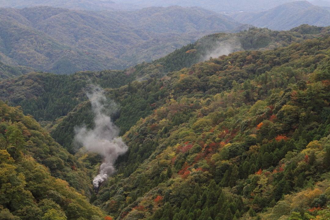 秋の峠は色鮮やか - 2019年紅葉・山口線 -_b0190710_16244799.jpg