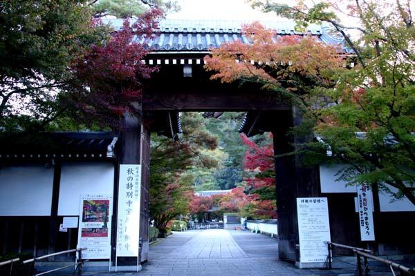 紅葉が始まった 永観堂_e0048413_21193000.jpg