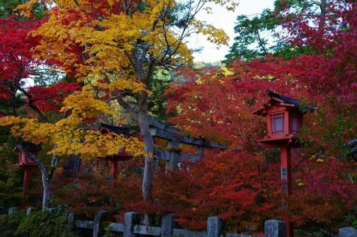 鍬山神社_e0177413_14061396.jpg