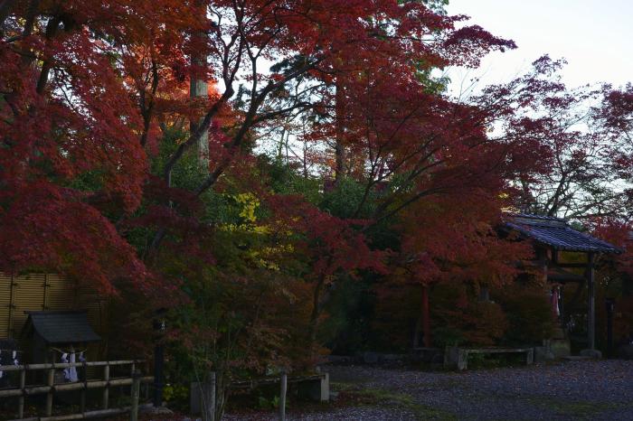 鍬山神社_e0177413_14062039.jpg