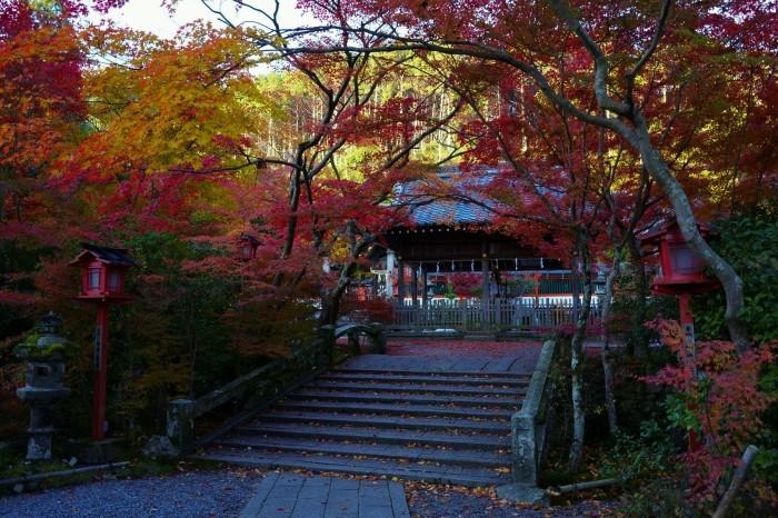 鍬山神社_e0177413_14065191.jpg