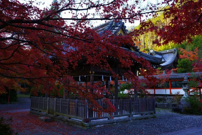 鍬山神社_e0177413_14072869.jpg