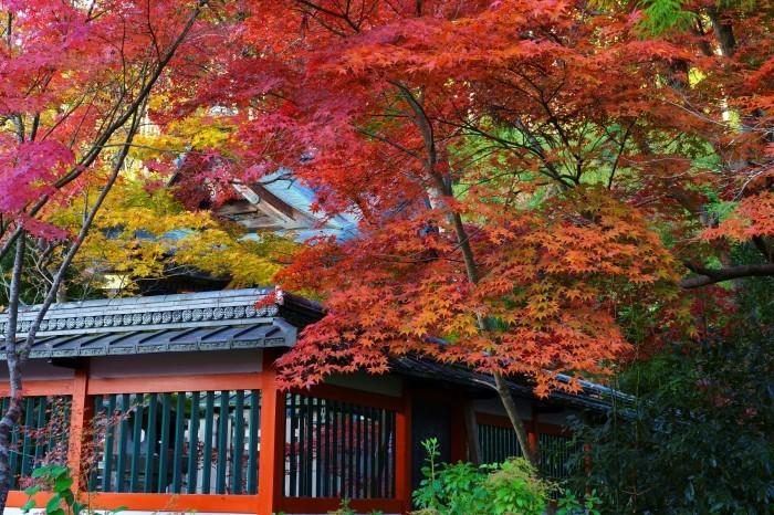 鍬山神社_e0177413_14085621.jpg