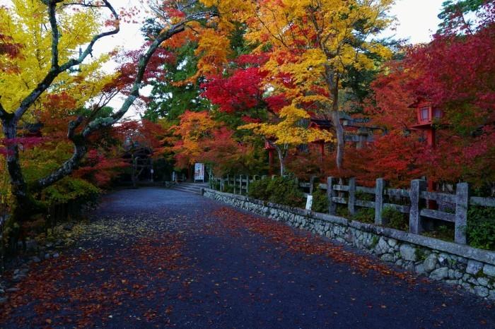 鍬山神社_e0177413_14102370.jpg