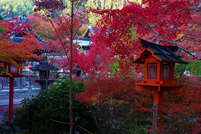 鍬山神社_e0177413_14105497.jpg