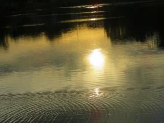 奈良を楽しむ・・5_e0030924_13445170.jpg