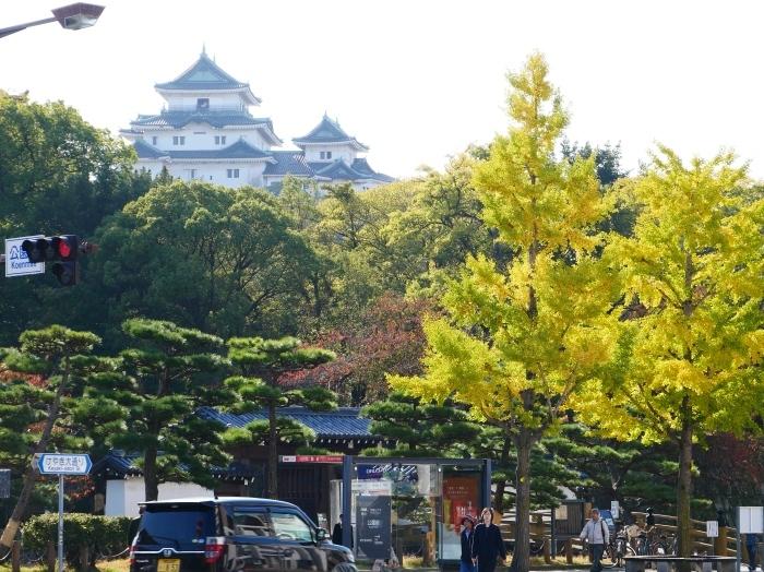 和歌山城の紅葉便り  2019-11-18 00:00  _b0093754_23153806.jpg