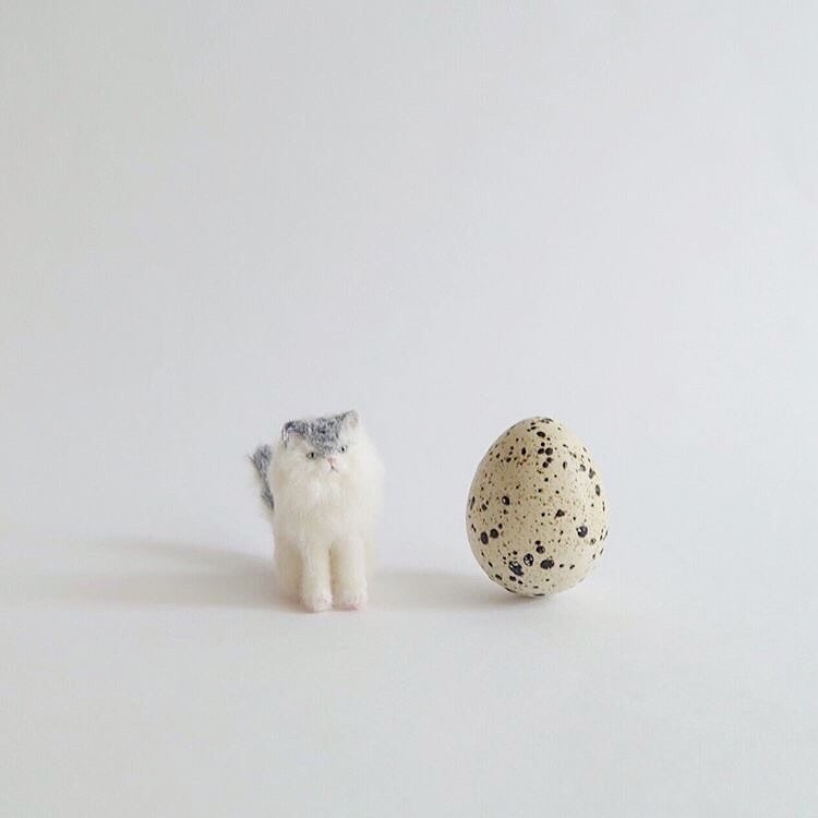 【猫町パレード2】出展者のご紹介 buryuguri さん。_e0060555_17095317.jpg