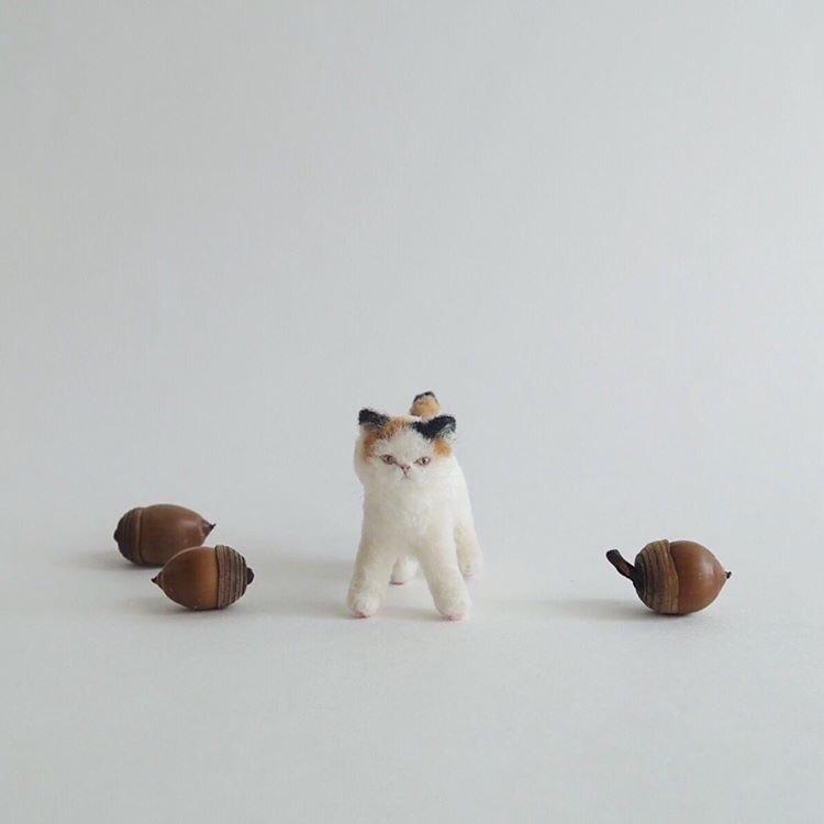 【猫町パレード2】出展者のご紹介 buryuguri さん。_e0060555_17121286.jpg