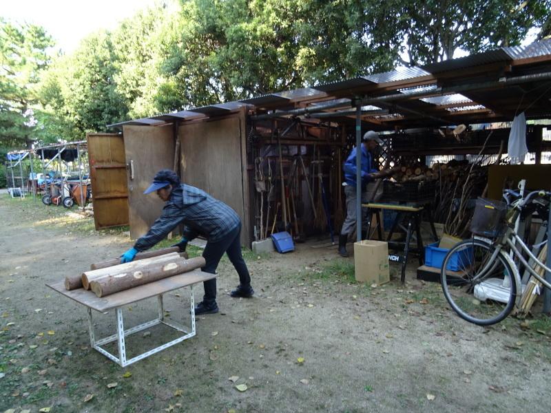ウツギ20株の植林・・・うみべの森_c0108460_17034465.jpg