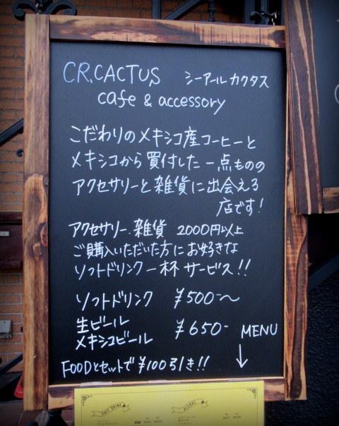 CR.CACTUS CAFE & ACCESSORY * 焼き立てパイをいただきに早速再訪!_f0236260_01204518.jpg