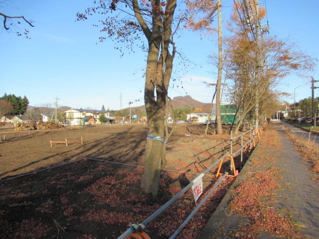 残る紅葉 * レッドカーペット&まだまだ続くホテル建設ラッシュ!_f0236260_23105900.jpg