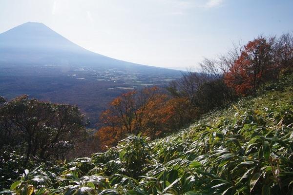 竜ケ岳(山梨県)_d0164761_08204983.jpg