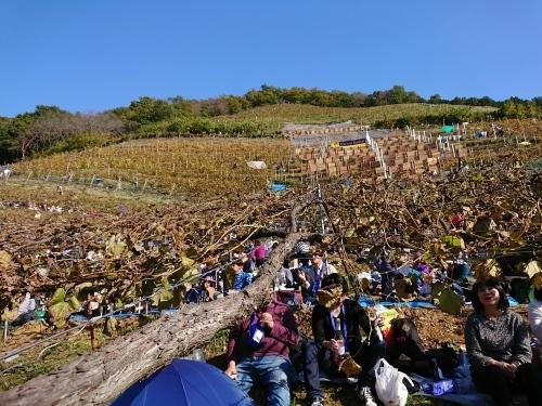 今年も行ってきました!第36回収穫祭♪_c0100865_12342441.jpg