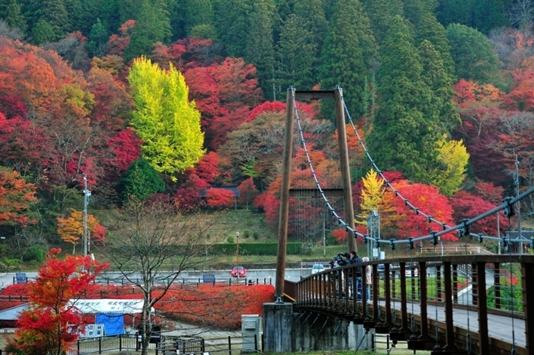 大井平公園_f0061172_20421486.jpg