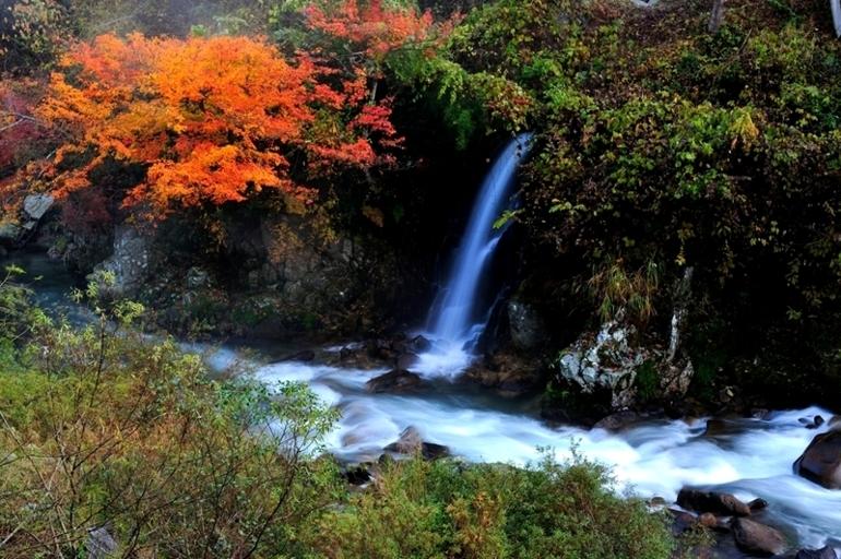 大井平公園_f0061172_20425461.jpg