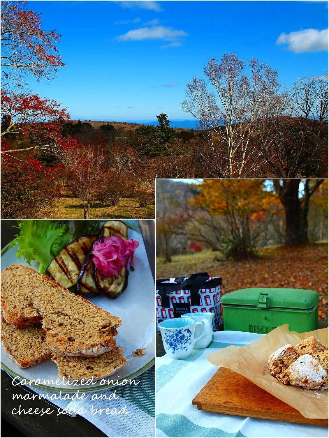 秋のピクニック_a0107981_08574169.jpg