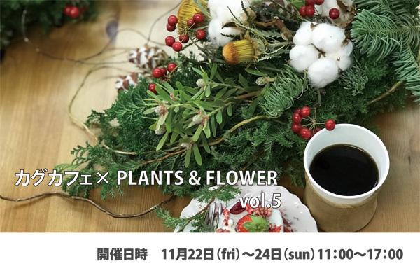 カグカフェ【植物】_f0264887_18481886.jpg