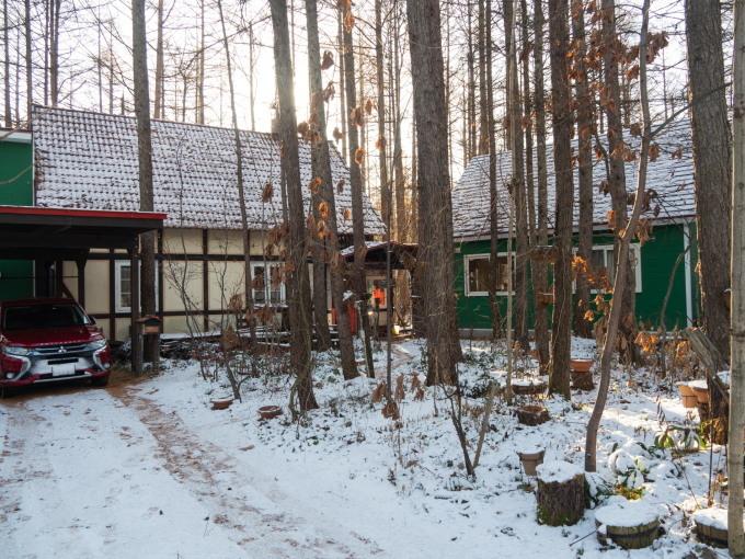 エゾリス君もお待ちかね?遅い初雪で薄っすら雪化粧!_f0276498_21592290.jpg