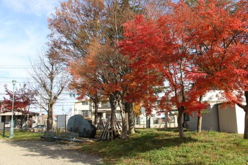 重文本館の朝の風景と午後の来客、2019.11.18_c0075701_19455298.jpg