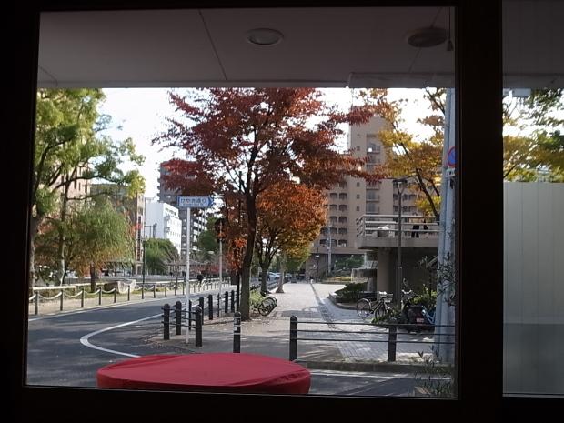 タボーラ タパス(TAVOLA TAPAS)@岡山市北区幸町_f0197703_15580673.jpg
