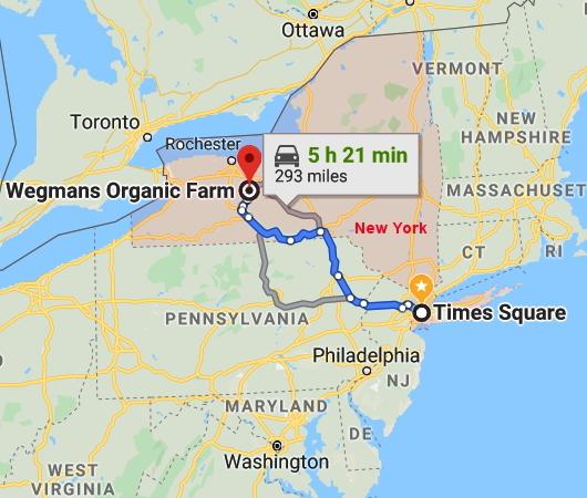 ウェグマンズの小麦農園ツアーや、ショッパーズ・クラブ会員情報_b0007805_09392910.jpg