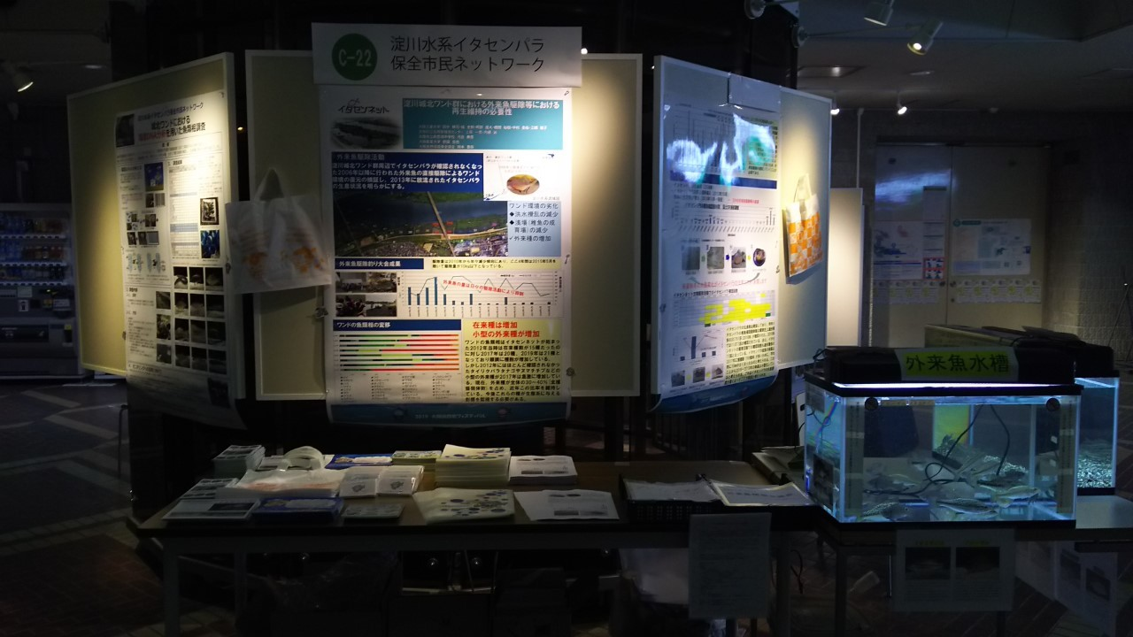 【ご報告】大阪自然史フェスティバル2019_a0263106_10295520.jpg