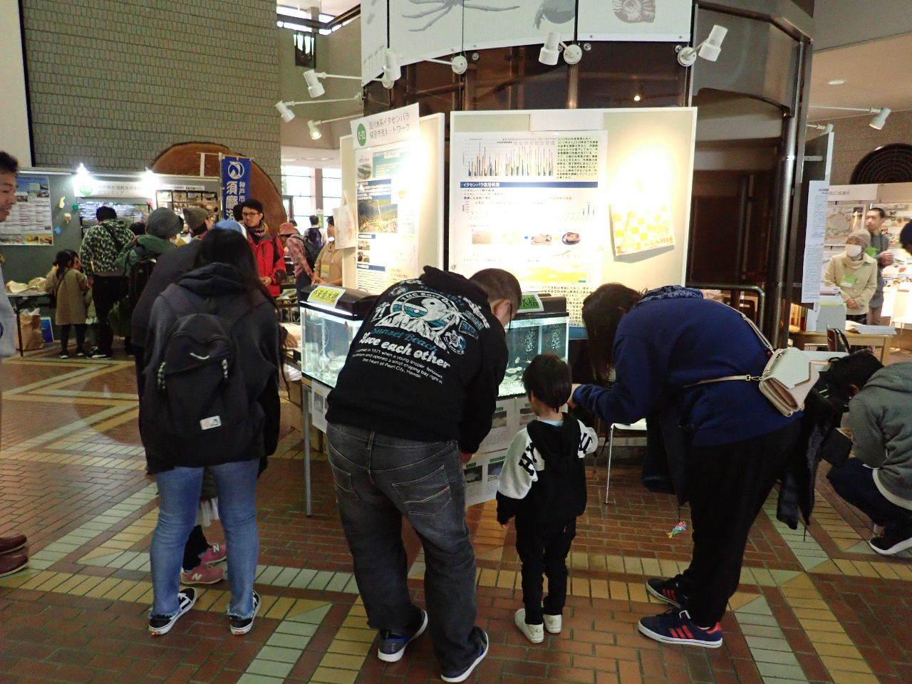 【ご報告】大阪自然史フェスティバル2019_a0263106_10301191.jpg