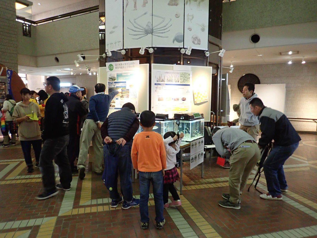 【ご報告】大阪自然史フェスティバル2019_a0263106_10302706.jpg