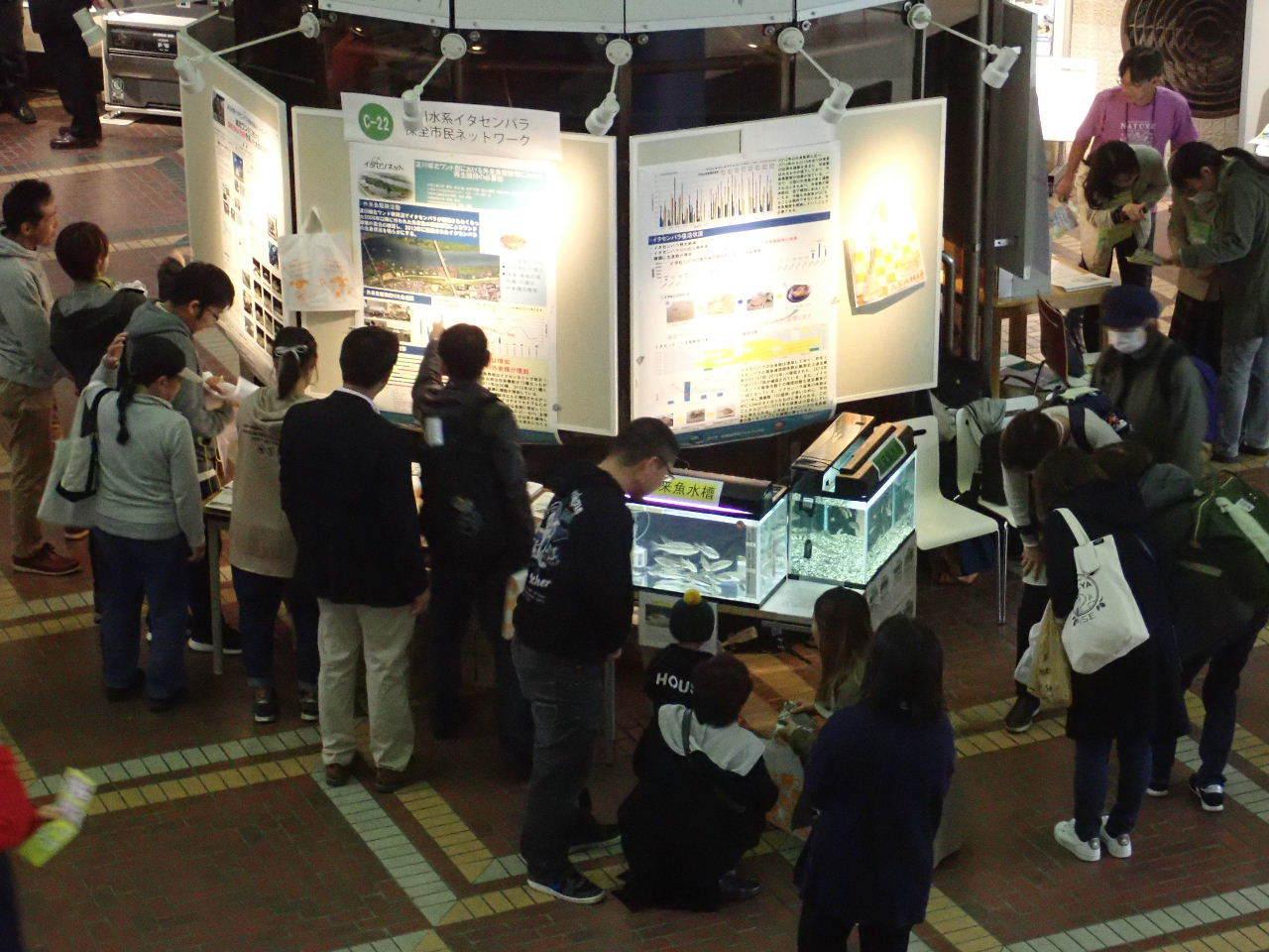 【ご報告】大阪自然史フェスティバル2019_a0263106_10304079.jpg