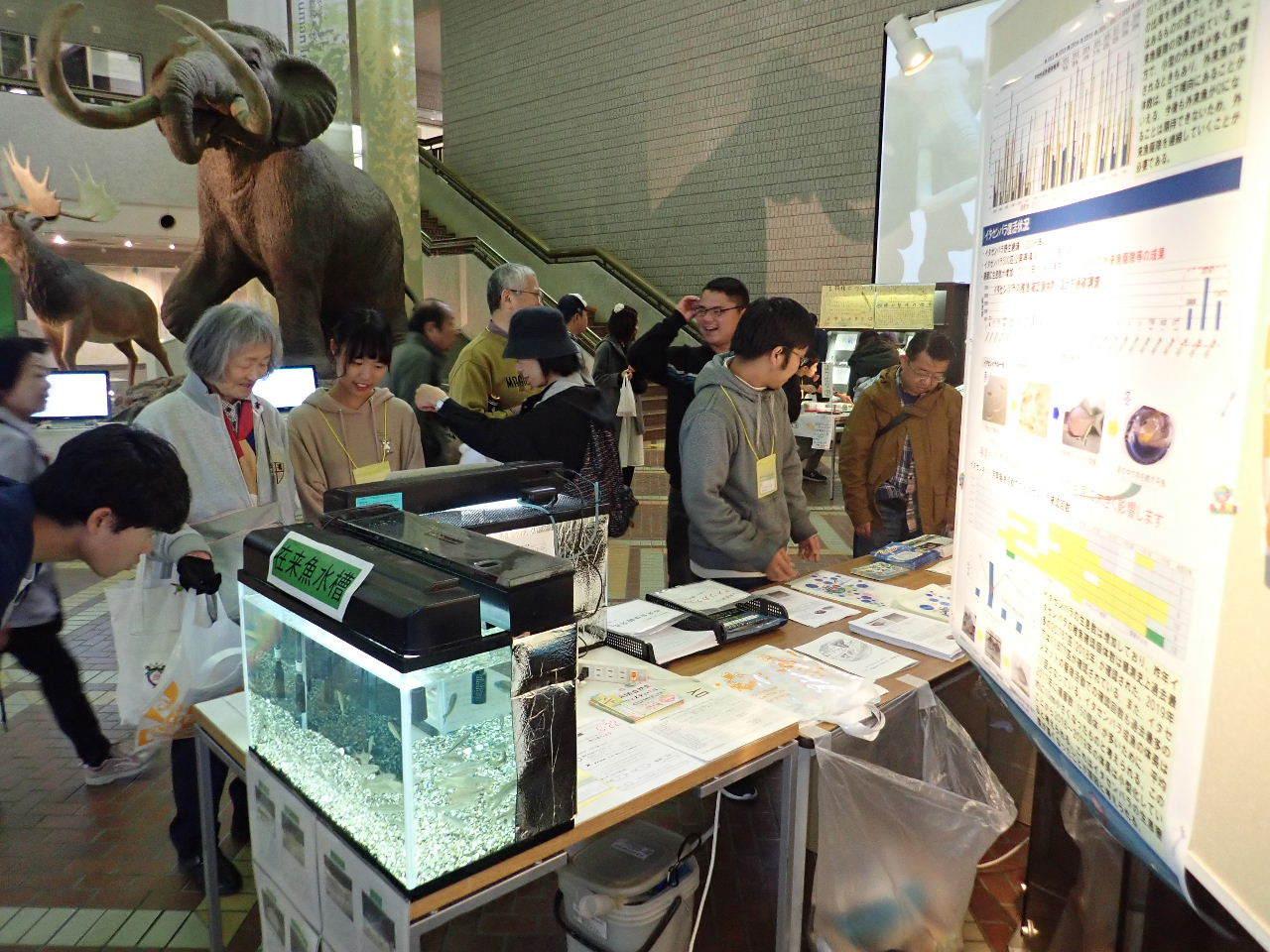 【ご報告】大阪自然史フェスティバル2019_a0263106_10305085.jpg