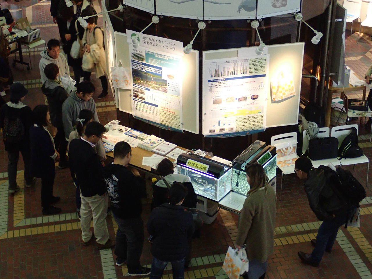 【ご報告】大阪自然史フェスティバル2019_a0263106_10342489.jpg