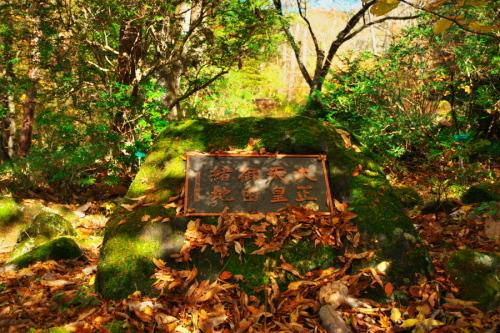 日光 日光植物園の秋3_a0263109_22164559.jpg
