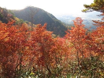ニツ箭山と下界の紅葉_b0369813_06300138.jpg