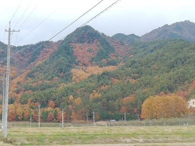 Hidamariさんからの帰り道_c0289116_17545718.jpg