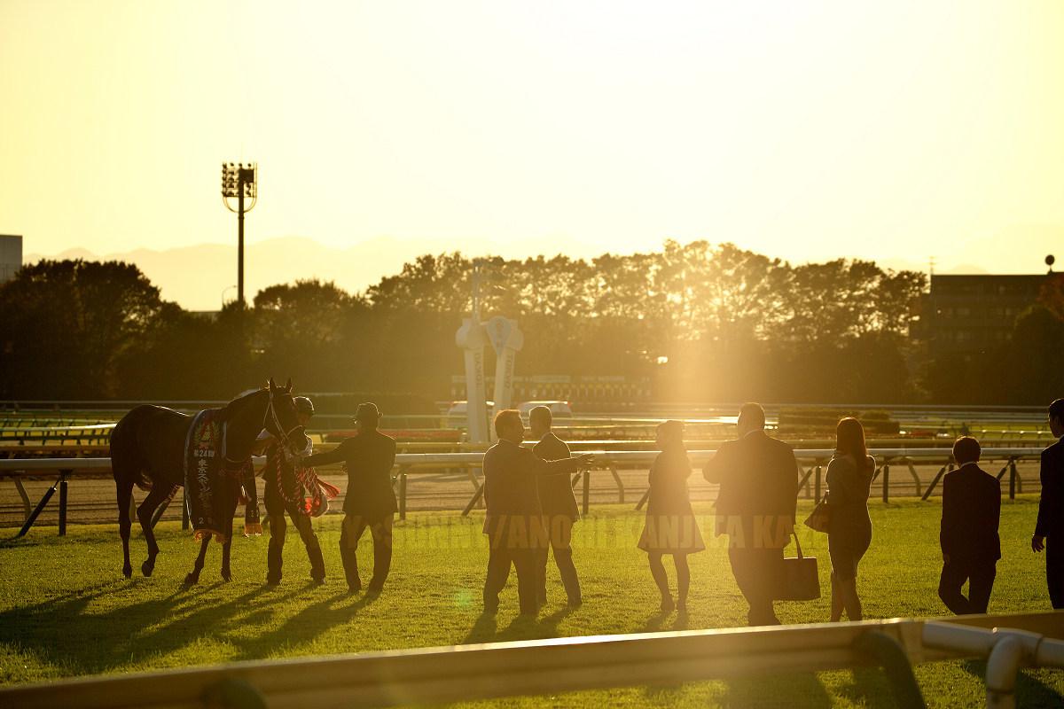 第24回東京スポーツ杯2歳ステークス(GIII)_a0204724_10451662.jpg