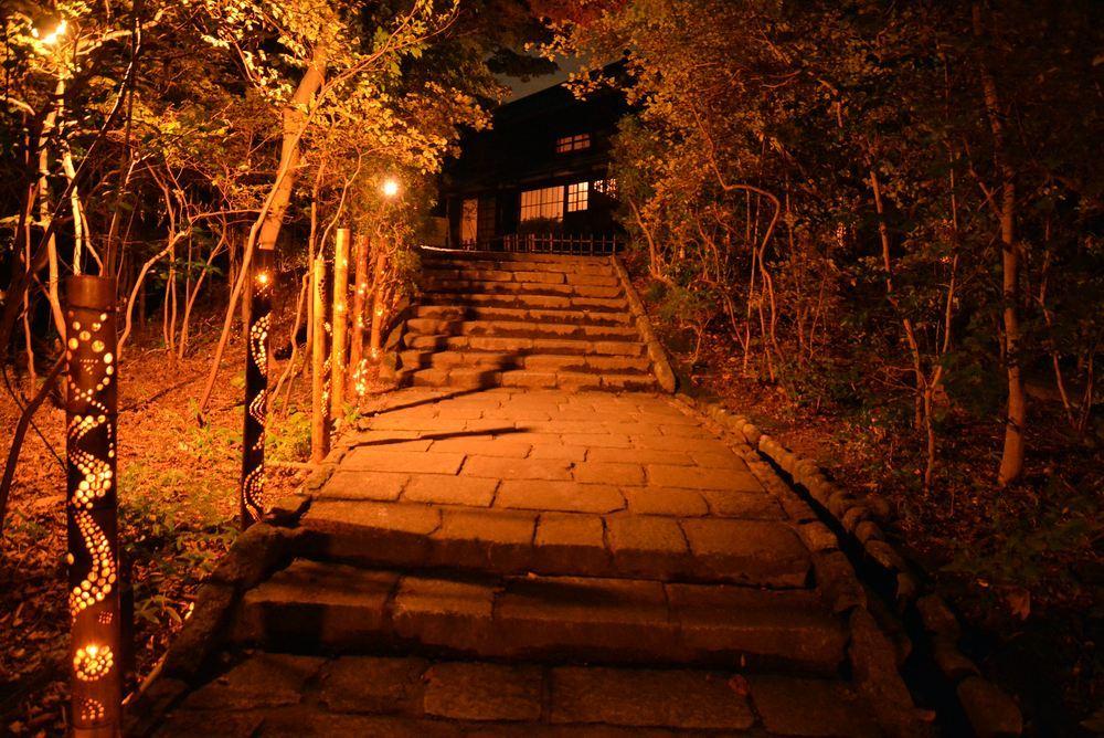 きらめき明治村 夜の偉人坂_e0373930_22043902.jpg