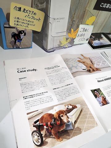犬と暮らすクリエーター展_c0062832_17290838.jpg