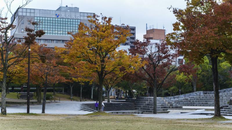 中央公園の秋 2019_d0246136_23175842.jpg
