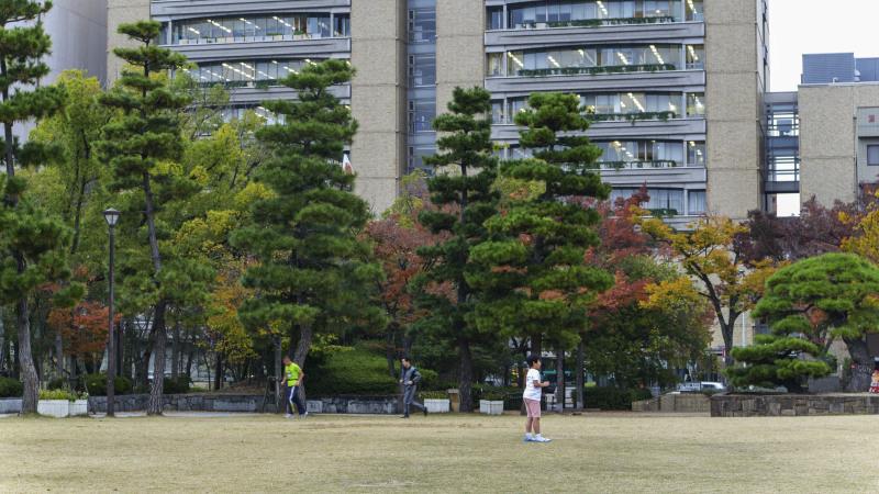 中央公園の秋 2019_d0246136_23181247.jpg